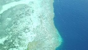 Aerial of coral reef drop off. A healthy coral reef drops into deep water in Wakatobi National Park in Indonesia. This region harbors extremely high marine stock footage