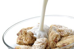 Healthy corn cereal Stock Image