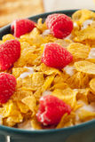 Healthy Cornflake Cereal Stock Image