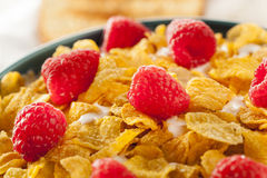Healthy Cornflake Cereal Royalty Free Stock Photos