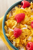 Healthy Cornflake Cereal Royalty Free Stock Photography