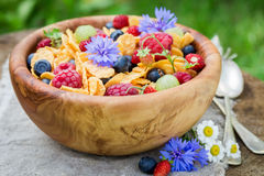 Healthy cornflakes with berry fruits Royalty Free Stock Image