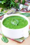 Velvety cream soup of spinach Royalty Free Stock Images