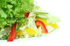 Healthy cuisine Stock Images
