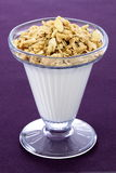 Healthy and delicious parfait Royalty Free Stock Photo