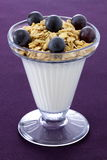 Healthy and delicious parfait Stock Images
