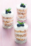 Healthy Dessert with Cereals and Yoghurt. Three glass of healthy dessert with cereals, yoghurt, blueberry and mint on a pink background royalty free stock image