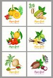 Vector superfood icons set. Healthy detox natural product of camu garcinia cambogia and maca. Carob, moringa, lucuma, coji berries, acai, guarana and noni stock illustration