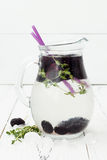 Healthy detox water with mulberry. Cold refreshing berry drink with ice and thyme on white wooden table. Clean eating Royalty Free Stock Images