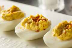 Healthy Deviled Eggs as an Appetizer Stock Image