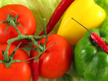 Healthy diet. Still of vegetables (tomatoes, lettuce, paprika and chilli Royalty Free Stock Photos