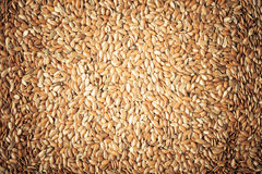 Healthy diet. Flax seeds linseed as natural food background Stock Photography