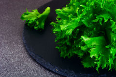 Healthy and diet food: green salad Isolated on Dark Background. Stock Image