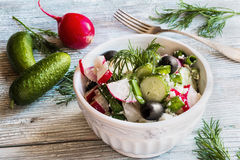 Healthy diet food: vegan vegetable salad with fresh cucumbers, radish, green onion, black olives, dill and feta cheese. Stock Photos