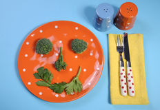 Healthy diet health food concept with happy vegetable face on plate. Healthy diet health food concept with happy smiley face made from broccoli and celery on a Stock Image