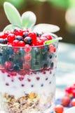 Healthy diet muesli colorful fresh fruit Royalty Free Stock Image