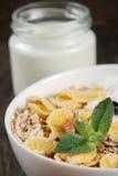 Healthy dietary breakfast Royalty Free Stock Image