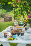 Healthy dinner with chicken and potatoes served in sunny day Royalty Free Stock Images