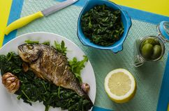 Healthy dinner or lunch with baked dorada fish