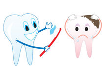 Healthy and diseased tooth Stock Photography