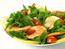 Healthy dish with shrimps,  Royalty Free Stock Photos