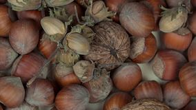 Healthy dried nuts. turntable clockwise. Healthy dried nuts. Rotating turntable clockwise shot. 4K stock footage