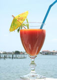 Healthy Drink In Summer Time Royalty Free Stock Photography