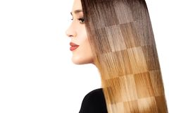 Healthy dyed long hair. Chessboard hairstyle cloloring technique Royalty Free Stock Photo