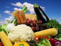 Healthy eating. Vegetables selection. Healthy Food series Royalty Free Stock Photo