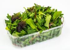 Healthy eating of arugula, mitsuna, chard, red mustard in plasti Royalty Free Stock Photography