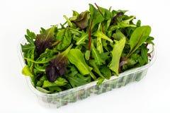 Healthy eating of arugula, mitsuna, chard, red mustard in plasti Stock Image