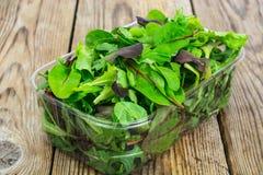 Healthy eating of arugula, mitsuna, chard, red mustard in plasti Stock Photos