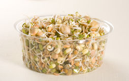 Healthy eating beans. Mung beans on white background Stock Photos