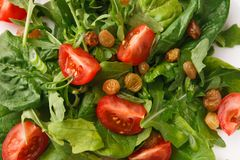Fresh salad with greens, tomatoes and raisins, closeup. Healthy eating concept. Fresh salad with greens, tomatoes and raisins closeup. Organic vegetables Royalty Free Stock Photography