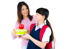 Healthy eating concept for school child Stock Images