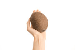 Healthy eating and diet Topic: Human hand holding a ripe brown coconut isolated on white background in studio, first-person view Stock Images