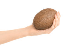 Healthy eating and diet Topic: Human hand holding a ripe brown coconut isolated on white background in studio Stock Images