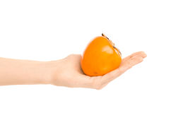 Healthy eating and diet Topic: Human hand holding a ripe persimmon isolated on a white background in the studio Stock Photos