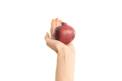 Healthy eating and diet Topic: Human hand holds a red pomegranate isolated on a white background in the studio, first-person view Stock Photo