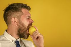 Healthy eating. Dieting and fitness. Man with long beard eat lemon. Vitamin citrus at hipster on yellow background. Fruit and healthy organic food. Vegetarian Stock Photos