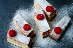 Raspberry pie. Healthy eating, food, dieting - pie  with  fresh raspberry soft cheese and  icing sugar, on   black background Royalty Free Stock Image