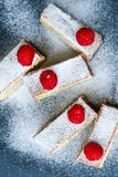 Raspberry pie. Healthy eating, food, dieting - pie  with  fresh raspberry soft cheese and  icing sugar, on   black background Stock Images