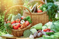 Healthy eating, healthy food, fresh vegetarian food on table. And in wicker basket - organic vegetable Stock Photography