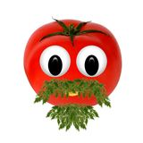 Healthy eating. Funny face made of vegetables and fruits with op Stock Image