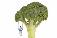 Healthy Eating Habits Starting From Childhood. Conceptual with child on a swing from a tree made of a broccoli floret royalty free stock photography