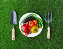 Healthy eating and horticulture stock photos