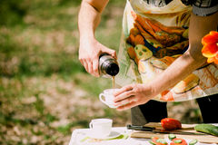 Healthy eating picnic with vegetables outdoors Stock Image