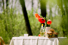 Healthy eating picnic with vegetables outdoors Stock Photos