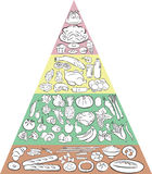 Food Pyramid. Vector illustration of Food Pyramid showing the main Food Groups Stock Photography