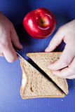 Healthy egg sandwich for lunch Stock Photography